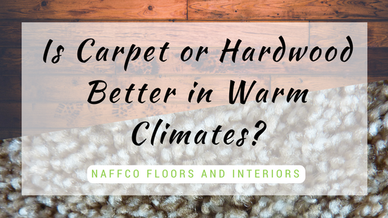Is Carpet or Hardwood Better in Warm Climates- (1)